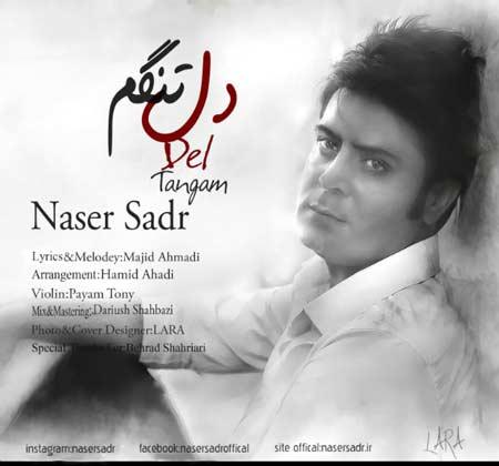 آهنگ جدید ناصر صدر بنام دلتنگم